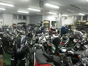 RIMG4648
