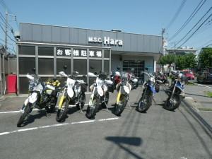 RIMG5973